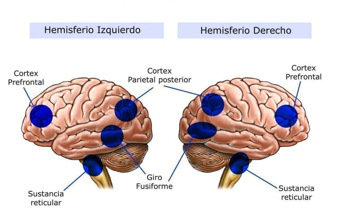 TRASTORNOS POR DEFICIT DE ATENCIÓN E HIPERACTIVIDAD (TDAH). IMPORTANCIA DE LA VISIÓN EN EL DIAGNÓSTICO Y SU TRATAMIENTO