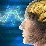 Neuro-Oftalmología