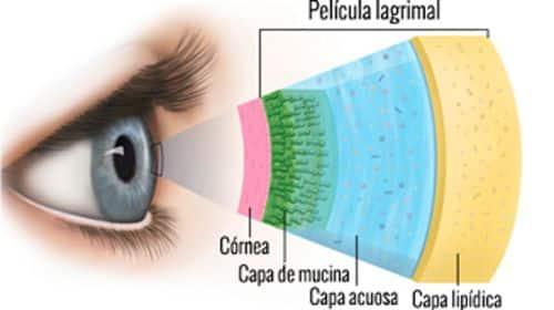 lagrima y ojo seco