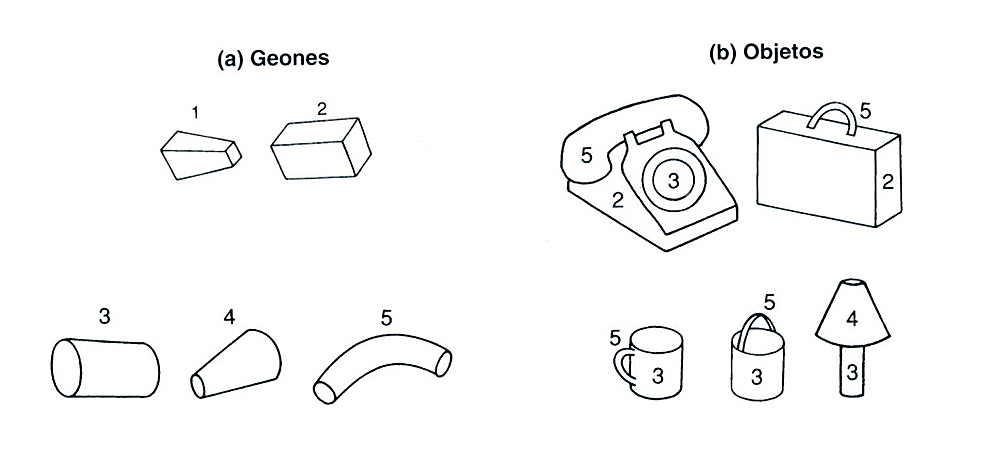 identificacion visual de formas