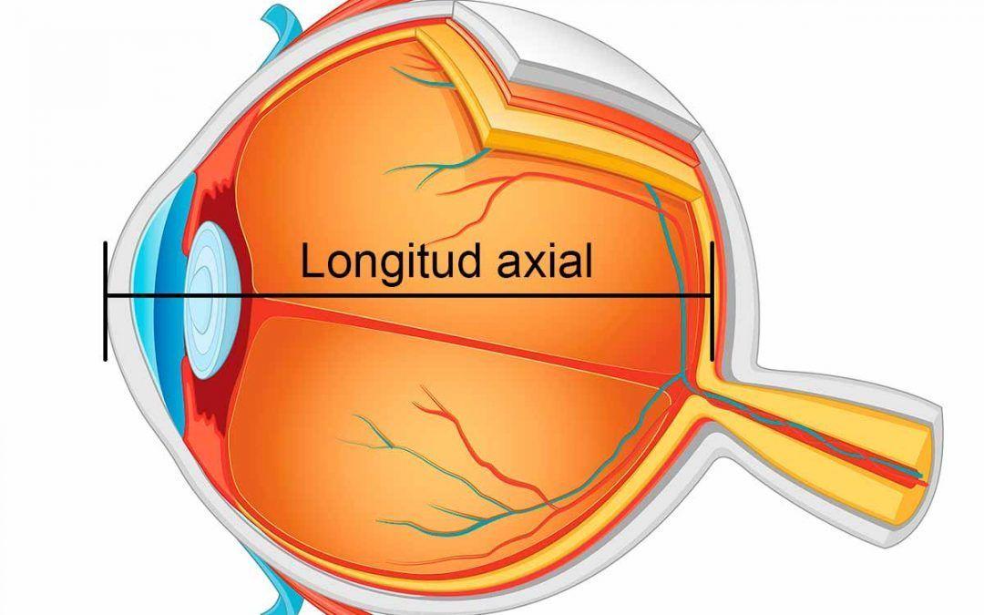 Longitud axial