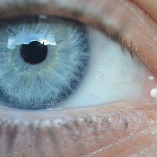 Mecanismo de la visión