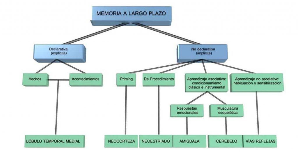 memoria visual a largo plazo