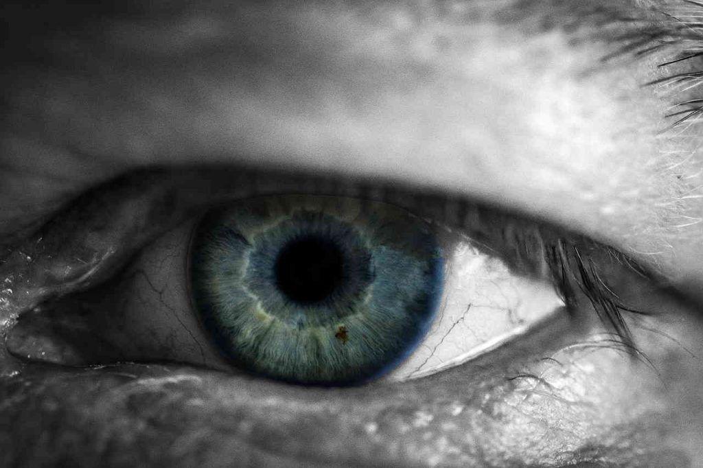 objetivo de la vision