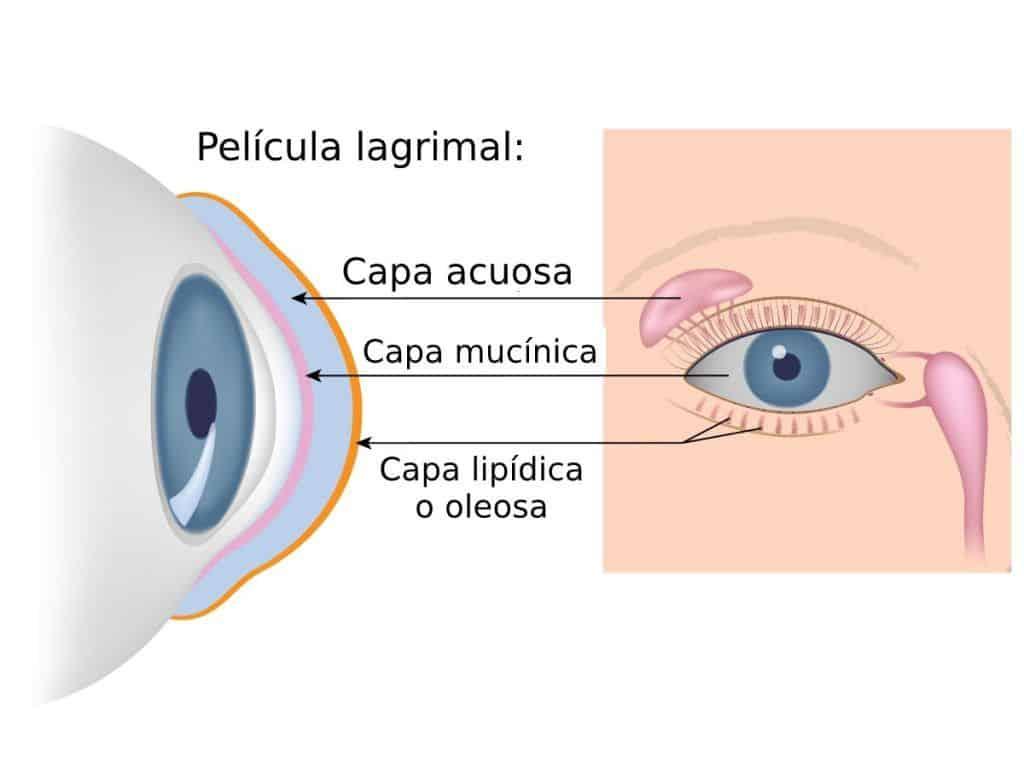 pelicula lagrimal