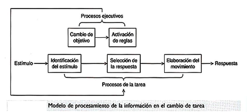 procesamiento de informacion en el cambio de tarea