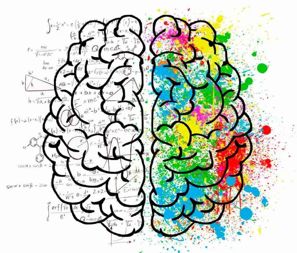 procesos cognitivos y vision